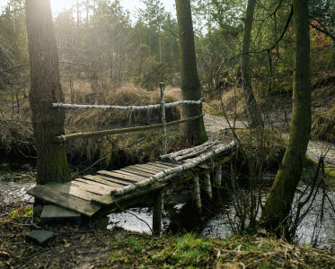 Wokół Zalewu Sulejowskiego – 50 km