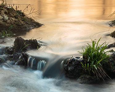 Poranek nad rzeką Widawką w Lubośni