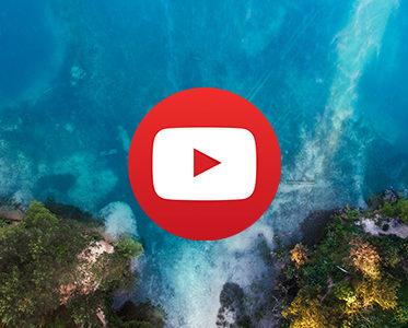 Rzeka Pilica i Wapienniki (wideo)